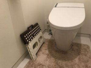 トイレのセノビーを折り畳む lucano12
