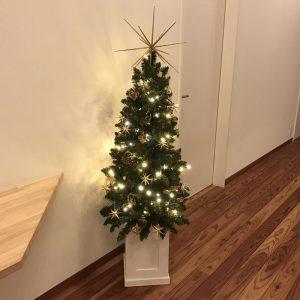 幻想的なクリスマスツリー完成 fairy-tale-tree-complete5