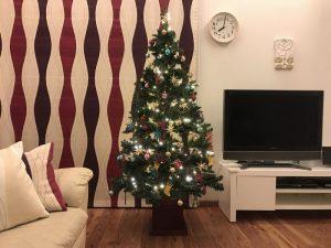 メインのクリスマスツリー点灯 gorgeous-tree13